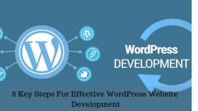 8 Key Steps For Effective WordPress Website Development